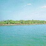 सुंदरवन राष्ट्रीय उद्यान (1987)